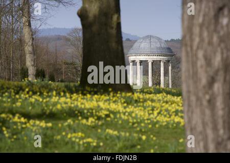 La Rotunda costruito nel 1766, e narcisi nel parco di Petworth House, West Sussex. La Rotunda ionica può essere Immagini Stock