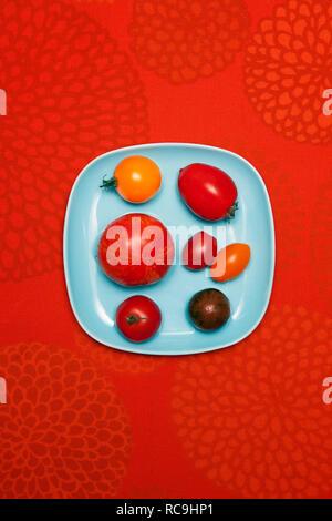 Vari i pomodori sulla piastra Immagini Stock