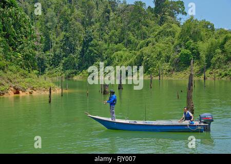La pesca di pesci snakehead al lago Temenggor, Belumè, Malaysia. Immagini Stock