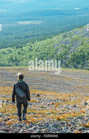 Trekker sulle pendici del Sokosti cadde. Urho Kekkonen National Park, Lapponia, Finlandia. Immagini Stock