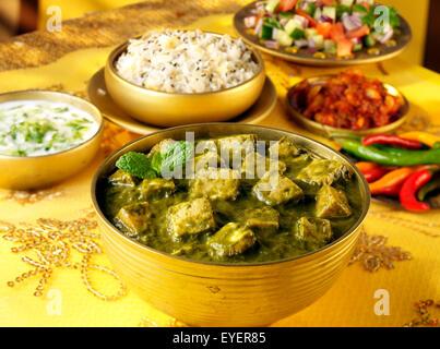 INDIAN PANEER PALAK CURRY Immagini Stock