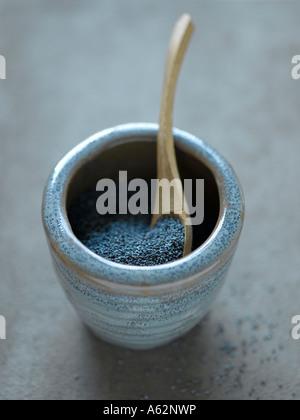 Il blu di semi di papavero Immagini Stock