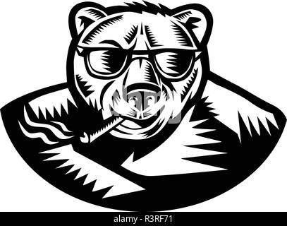 Retrò stile xilografia illustrazione di un orso grizzly di fumare un sigaro guardando dalla parte anteriore su sfondo isolato in bianco e nero. Immagini Stock