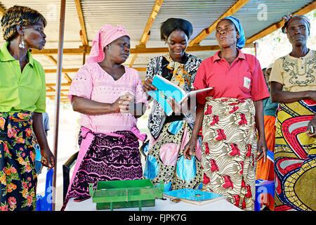 I membri di una banca per le donne gruppo. Regione Copperbelt, Zambia. Immagini Stock