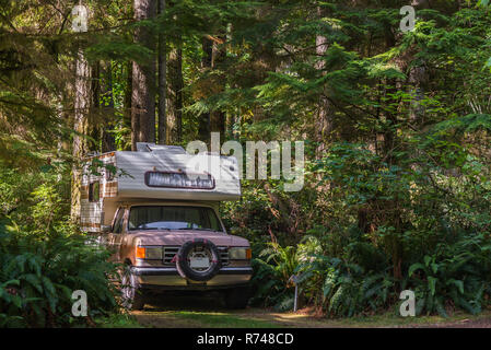Camper parcheggiato sulla pista forestale, Quadra Island, Campbell River, Canada Immagini Stock