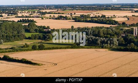 Una scena rurale con campi di maturazione di orzo in una fattoria nel Suffolk, Inghilterra Immagini Stock