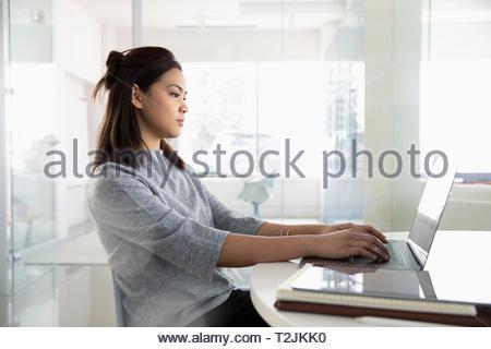Imprenditrice lavora al computer portatile Immagini Stock