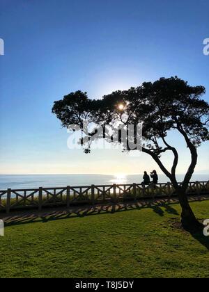 Giovane seduto su un recinto di scattare le foto e guardando la vista, Santa Monica, California, Stati Uniti Immagini Stock