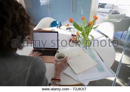 Imprenditrice di lavoro a casa Immagini Stock