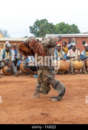 Boloye danza della pantera l uomo nella comunità Senufo, Savanes distretto, Waraniene, Costa d'Avorio Immagini Stock