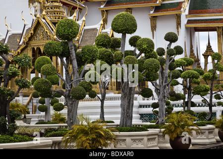Thailandia, Bangkok, Grand Palace e alberi ornamentali sui terreni del palazzo accanto al Wat Phra Kaeo Immagini Stock