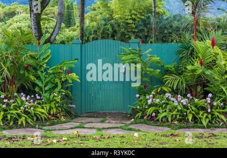 Hanalei, Hawaii, Kauai, fiori, cancello verde Immagini Stock