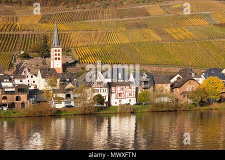 Vista del distretto Merl, Valle della Mosella, Zell an der Mosel, Renania-Palatinato, Germania, Europa Immagini Stock