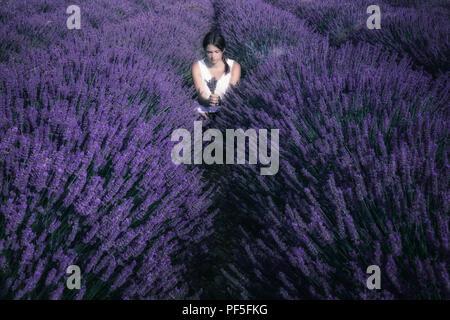 Una ragazza in un abito bianco in piedi in un campo di lavanda in Provenza, Francia Immagini Stock