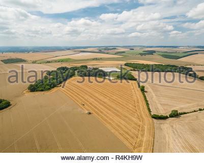 Antenna di raccolto paesaggio di mietitrebbia estate taglio campo di grano raccolto con rimorchio per trattore in agriturismo Immagini Stock