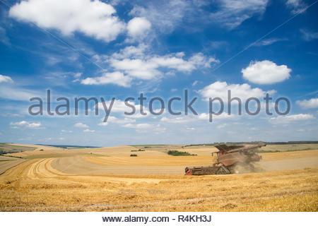 Vista del raccolto di mietitrebbia estate taglio campo di grano raccolto e cielo blu in agriturismo Immagini Stock