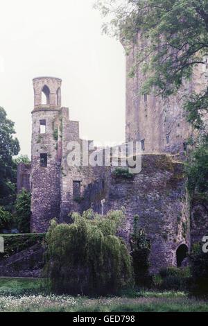 La torre di un vecchio castello Immagini Stock