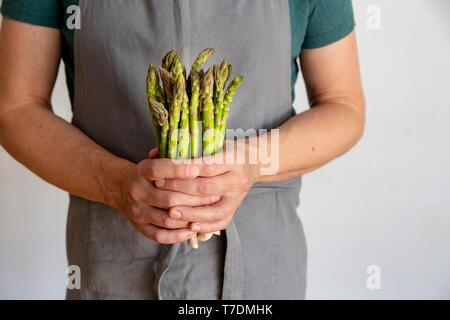 Uomo in grigio grembiule prima di sfondo bianco tenendo un mazzo di asparagi verdi nelle sue mani con spazio di copia Immagini Stock