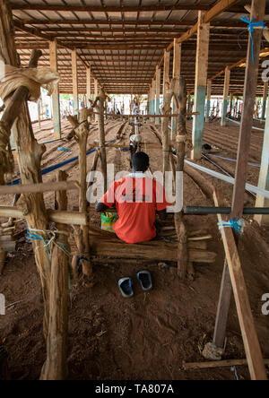 L'uomo africano dalla tribù Senufo tessitura in un tradizionale fabbrica tessile, Savanes distretto, Waraniene, Costa d'Avorio Immagini Stock