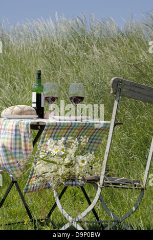 Tabella con vino rosso e il pane nel campo Immagini Stock