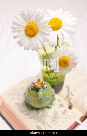 Marguerites, rana figurina e libro aperto Immagini Stock