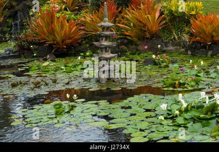 Kapaa Kauai Hawaii lillies acqua laghetto in giardino giapponese Immagini Stock