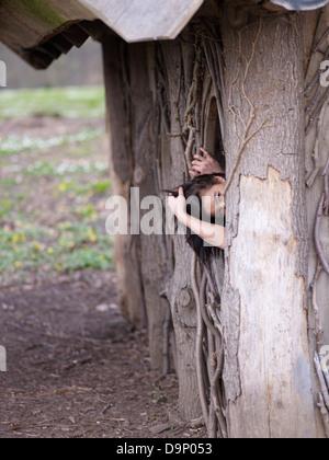 Dai capelli scuri donna nella capanna in legno Immagini Stock
