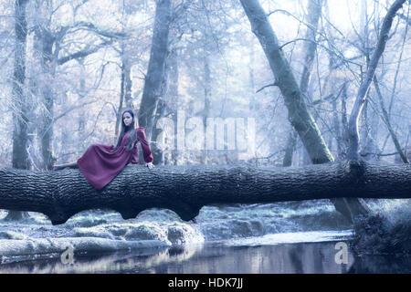 Una donna in un vestito viola è seduta su un tronco al di sopra di un fiume in inverno Immagini Stock