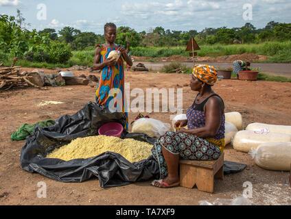Le donne africane rendendo attiéké, Région des Lacs, Sakiare, Costa d'Avorio Immagini Stock