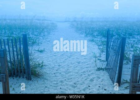 Un molto nebbioso Beach percorso attraverso le dune Immagini Stock