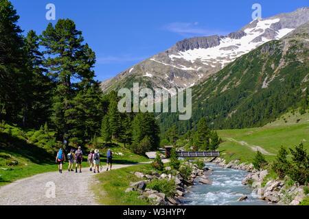 Escursionismo gruppo presso Zamserbach, Zamser Grund, Alpi della Zillertal, Zillertal, Tirolo, Austria Immagini Stock