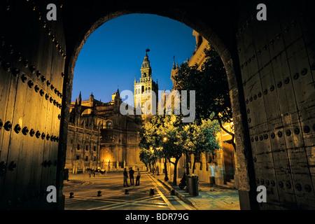 Spagna, Sevilla, Torre Giralda con la cattedrale sulla sinistra al crepuscolo visto attraverso le pareti dell'Alcazar Immagini Stock