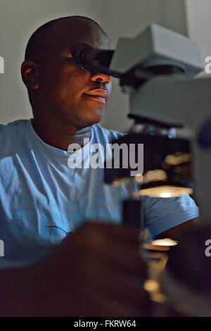 L'uomo guarda la tubercolosi campione con microscopio di Morogoro, Tanzania. Immagini Stock