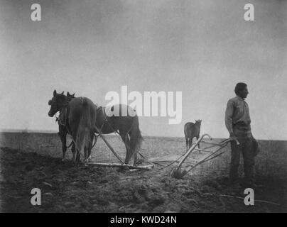 L'alba della civiltà, una foto di un nativo americano in un campo con un cavallo disegnato a aratro. C. Immagini Stock