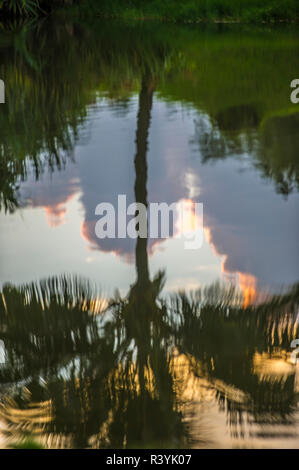 Hanalei Bay, Hawaii, Kauai, Kauikeolani station wagon, riflessione delle Palme Immagini Stock