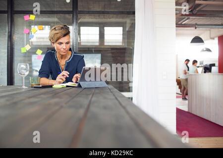 Donna con notebook Immagini Stock