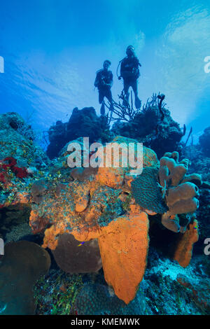 Subacquei esplorare un reef in Grand Cayman. Immagini Stock