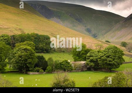 Regno Unito, Cumbria, York, Caultey, Cautley Thwaite Farm al riparo tra gli alberi al di sotto del tubo di lancio Cautley cascata che scorre fuori Howgill Fells Immagini Stock