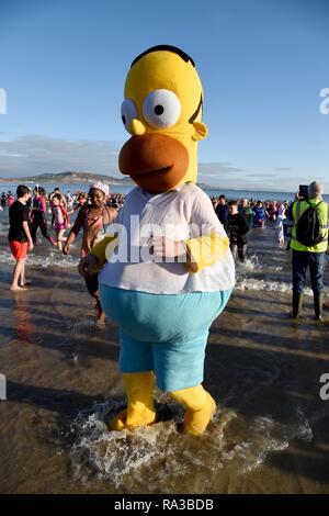 Lyme Regis, Dorset. Il 1° gennaio 2019. Homer Simpson, Lyme affondo, nuovi anni nuotare, Lyme Regis, Dorset Credito: Finnbarr Webster/Alamy Live News Immagini Stock