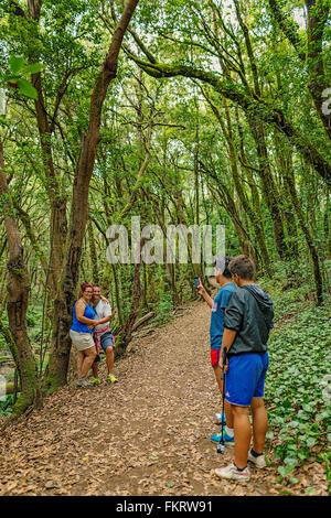 Gli escursionisti di scattare le foto. Parco Nazionale di Garajonay è coperto da dense foreste di alloro. La Immagini Stock