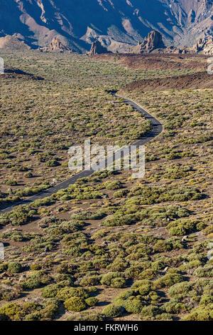 Strada asfaltata attraversa l'aspro paesaggio ai piedi del vulcano Teide. Immagini Stock