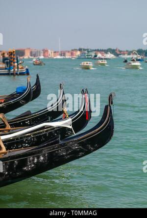 Le gondole del Canal Grande, della Regione del Veneto, Venezia, Italia Immagini Stock