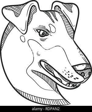 Disegno stile sketch illustrazione della testa di un Manchester Terrier, una razza di cane di smooth-haired terrier tipo visto dal lato. Immagini Stock