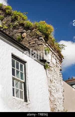 Irlanda, Co Louth, penisola di Cooley, Carlingford, Newry Street, faccia corbel nella veletta di casa medievale rovine Immagini Stock