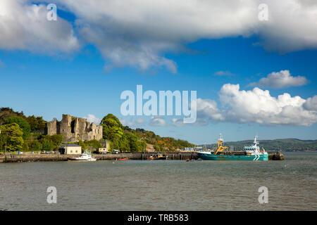 Irlanda, Co Louth, penisola di Cooley, Carlingford, St John's castello medievale, rovina sopra il porto Immagini Stock