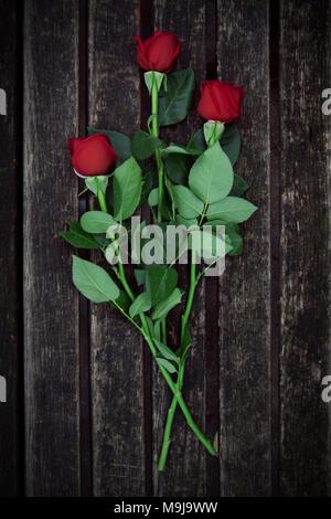 Tre Rose giacente sulla panca in legno Immagini Stock