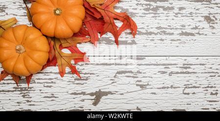 Un gruppo di zucca in miniatura e lascia su una stecca di legno sfondo Immagini Stock