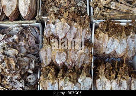 Il Vietnam, Vung Tau, street market, calamari display Immagini Stock