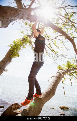 Ragazzo adolescente in piedi sul ramo Immagini Stock