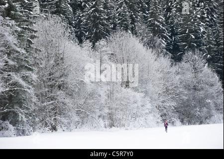 Jogging attraverso un bellissimo paesaggio innevato. Immagini Stock